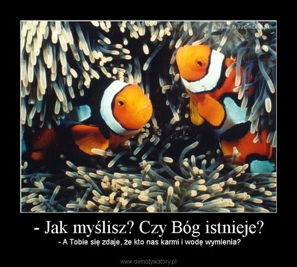 http://demotywatory.pl//uploads/201004/1271740367_by_PtakMarceli_600.jpg