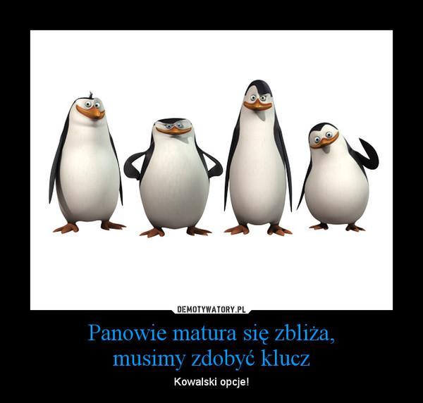 matura_pingwiny
