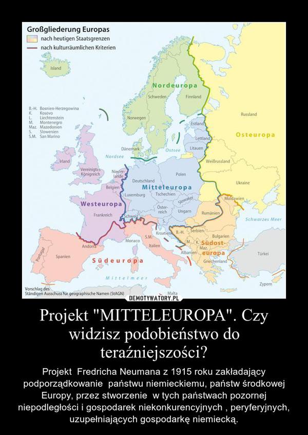 Nasze spory to wojna Mitteleuropy z Międzymorzem