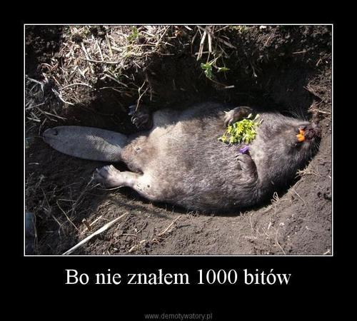 http://demotywatory.pl/uploads/1246484385_by_cykus__500.jpg