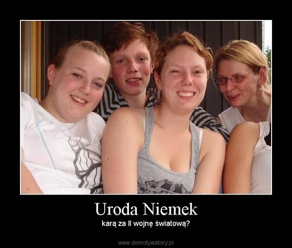Uroda Niemek - Demotywatory.pl