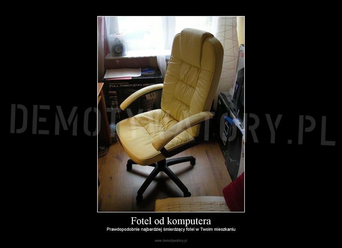 Fotel Od Komputera Demotywatorypl