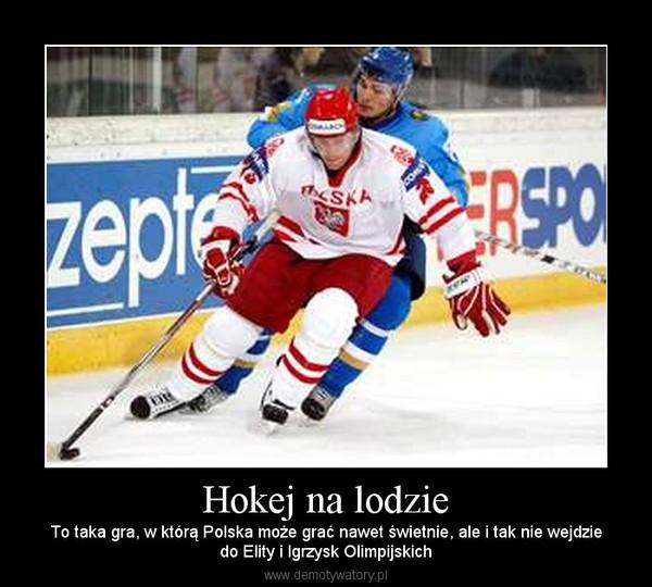 hokej na lodzie