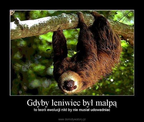 http://demotywatory.pl/uploads/201007/1278946099_by_WiOlCiAnH_500.jpg