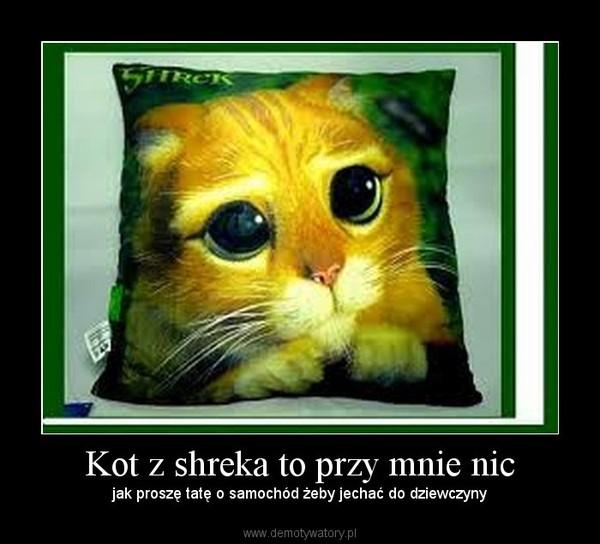 Kot Z Shreka To Przy Mnie Nic Demotywatorypl