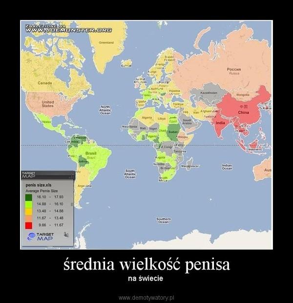 srednia wielkosc penisa