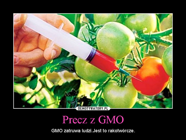 essays on genetically modified crops and food security Genetically modified crops 5 pages 1170 words november 2014 saved essays save your essays here so you can locate them quickly.