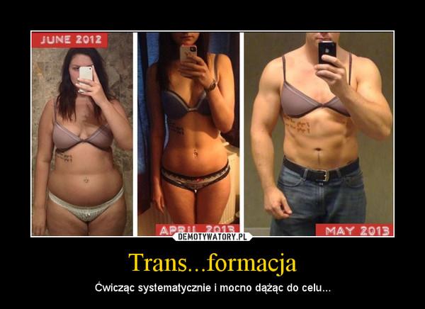 trans ja seuraa haetaan