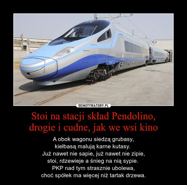 Stoi Na Stacji Skład Pendolino Drogie I Cudne Jak We Wsi