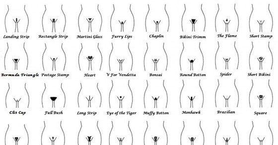 Katalog Kobiecych Fryzur Intymnych Demotywatorypl