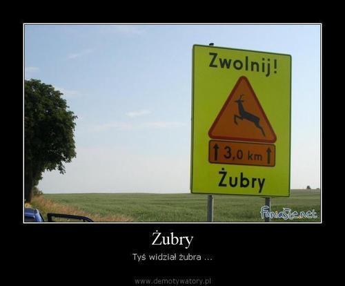 http://demotywatory.pl/uploads/73_500.jpg